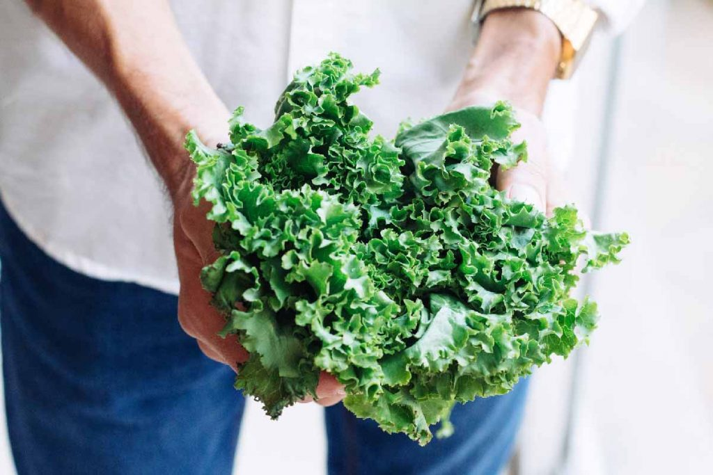 Broccoli and Cabbage best healthy food