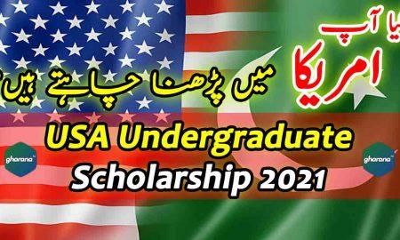 USA Undergraduate Scholarship 2021