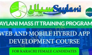 Free Mobile App and Web Development Course Saylani Courses Adm